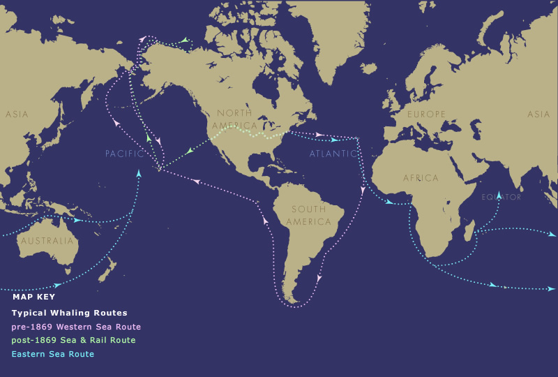 map of typical whaling routes